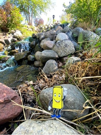 bricky by the creek