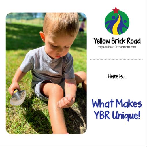 what makes ybr unique